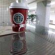 Starbucks Coffee:スターバックス