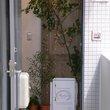 Fuchsia:フューシャ