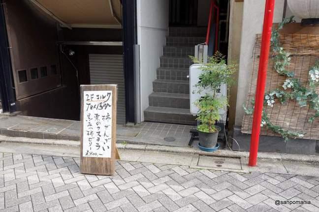 2013/11/03:コルク:外観:3456