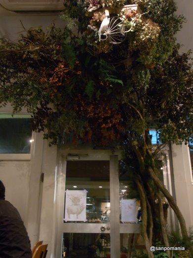 2011/11/26:ハイブカフェ:内装:3507