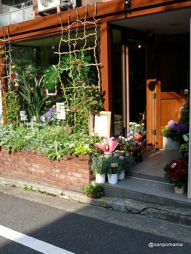 2009/05/10:花楽里2:外観:3809