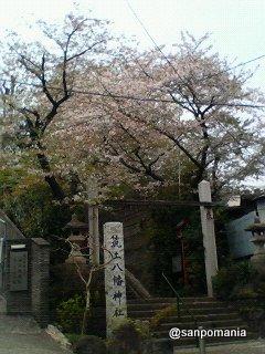 2007/04/07:筑土八幡神社::1967